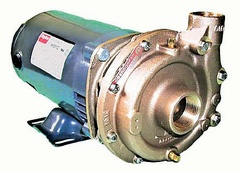 Oberdorfer Pump 700DS-10