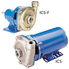 Goulds 1SS1F1F0 ICS SS Centrifugal Pump