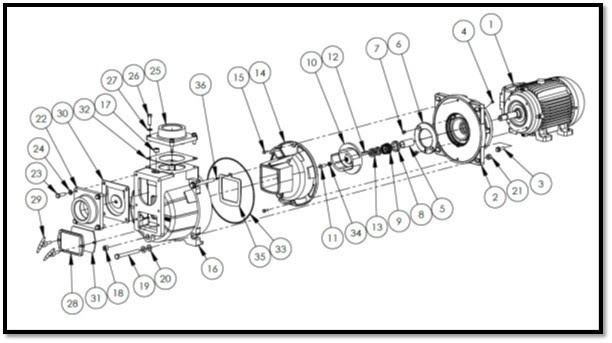 AMT Self Priming Sewage Trash Pump Parts Diagram