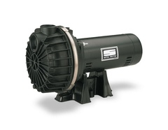 Sta-Rite Pumps BPDH10 PD Series Self-Priming Pump