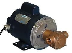 Oberdorfer Pump N305M-08