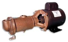 Oberdorfer Pump 101-J25