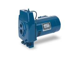 FL Convertible Jet Pumps
