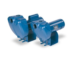 Sta-Rite Pumps DS3HE3 DS3 Series Self-Priming Pump