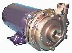 Oberdorfer Pump 109MB-05M19