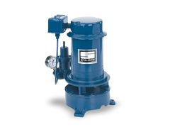 Sta-Rite Pumps SSJE  Deep Well Jet Pump