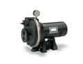 PL Convertible Deep Well Jet Pumps