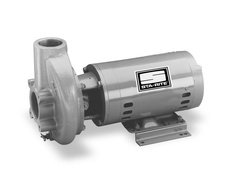 Sta-Rite Pumps CCHH CC Series Centrifugal Pump