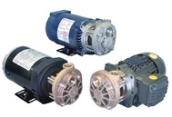 T31 Series Turbine Pumps